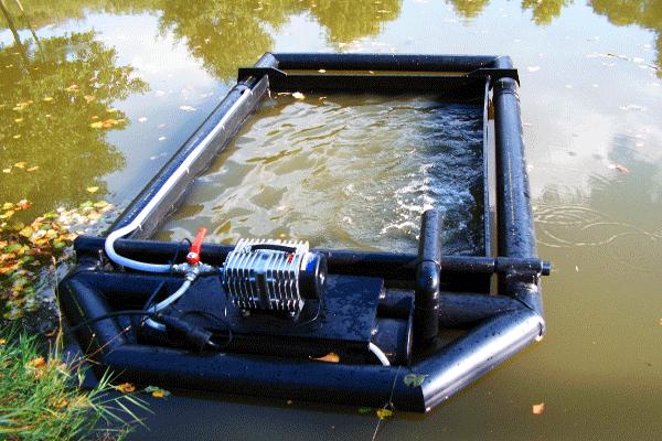 Teich in teich kreislaufanlagen teichwirtschaft for Fischarten im teich